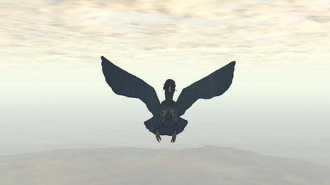 飛ぶインコ0116.jpg