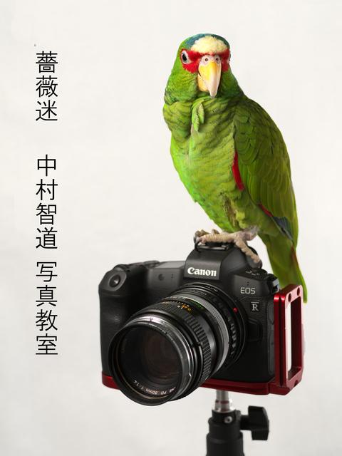 baramei_photo.jpg